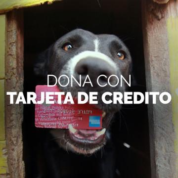 donacion debito